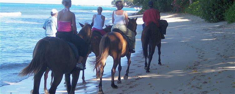 Horse riding on a Barbados beach