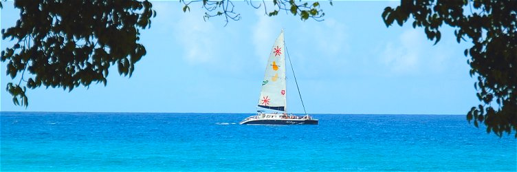 Catamaran sailing in Barbados