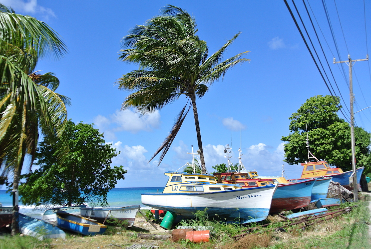 6 mens bay fishing villa boats- popular with vujaday barbados fans