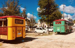 #1 Bajan Bus a Barbados Classic