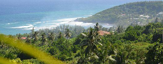 The Barbados Countryside