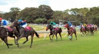 Barbados Sandy Lane Gold Cup Horse Race