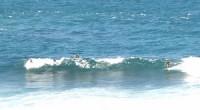 Barbados Surf Spots