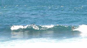 Surfing in Barbados!
