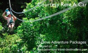 CourtesyRentaCar U-drive-Adventures zipline Treetop