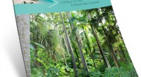 New Magazine Features Barbados Holidays for Independent Travelers