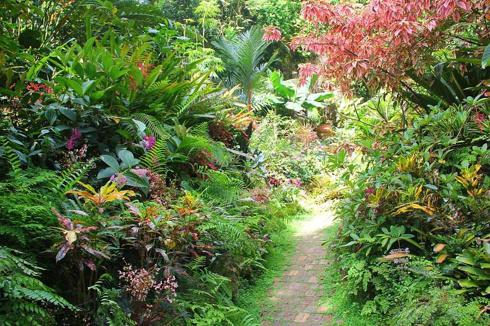 Photo Tour Of Hunte S Gardens Barbados Barbados Org