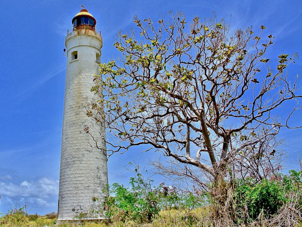 Tourism kick-starts its revival with care facilities at the old Harrison's Point Naval Base by the Lighthouse.