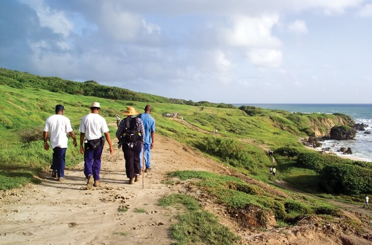 Enjoy an exciting hike through cane fields, gullies, tropical forests and coastal communities of Barbados