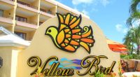 Yellow Bird Hotel Named Thrice in Tripadvisor's Travelers' Choice Awards!