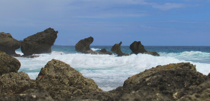 Rock formations off Bathsheba