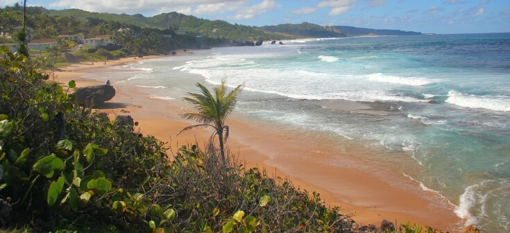 View of Bathsheba