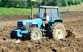 Barbados agriculture and soil preservation