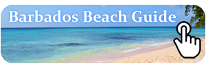 Barbados Beach Guide