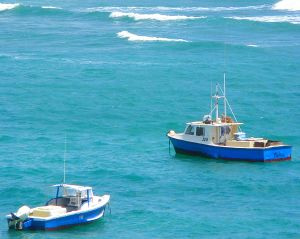 Barbados fishing boats