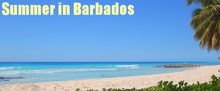 Summer in Barbados
