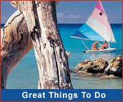 Great Things To Do In Barbados