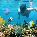 Underwater Adventures Barbados