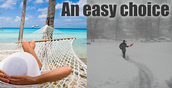 Sun vs snow... an easy choice