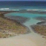 Barbados tide pools and reefs