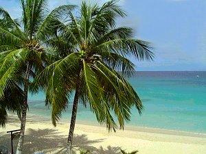 puerto rico jamaica grenada martinique vincent barbados virgin islands tied