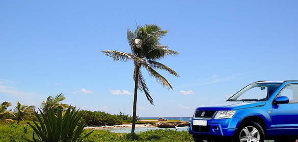 Barbados Driving Tips