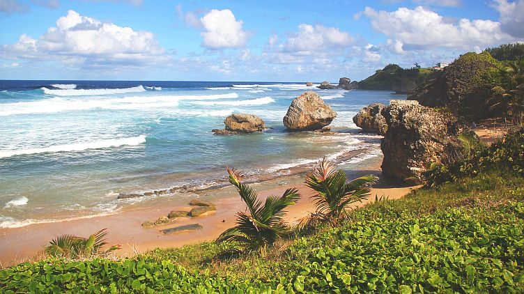 Overlooking Bathsheba
