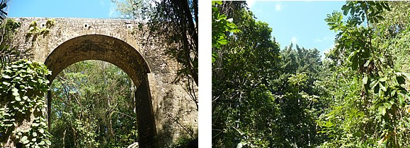 Blackmans Gully & Bridge, Barbados