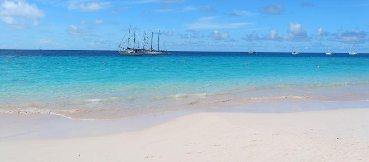 Boats Ancd In Carlisle Bay Barbados
