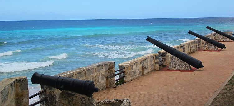 Cannon guarding Charles Fort