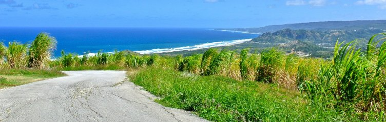 View at Cherry Tree Hill, Barbados