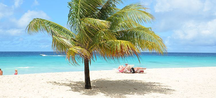 Soaking up the sun at Dover Beach