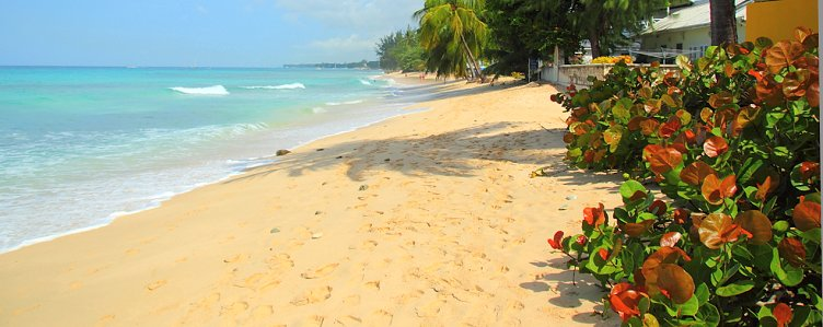 The beach at Fitts Village, Barbados