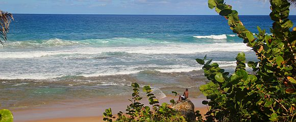 barbados-beach-nudes-sterns-small