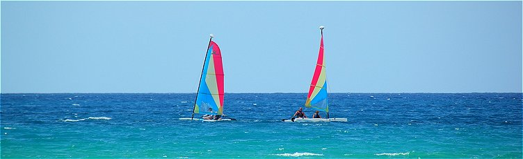Hobie cats sailing off Speightstown