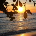 Barbados' Best Sunset Views