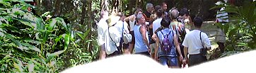 Barbados Eco Tours