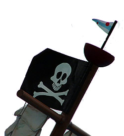 Flag of the pirates of the Caribbean
