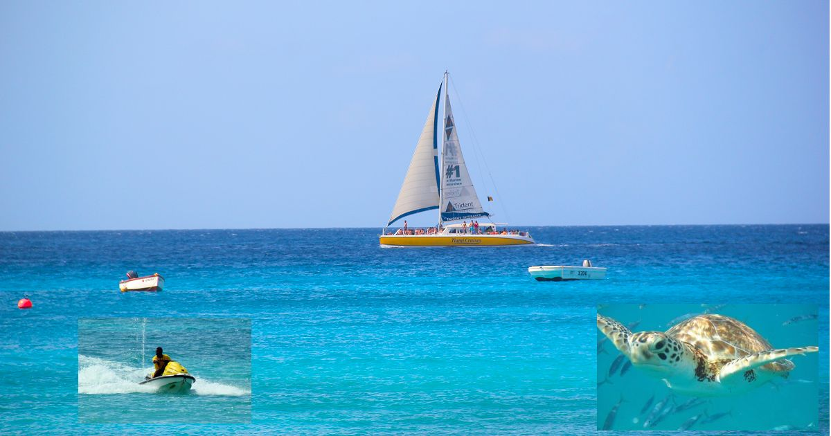 Barbados Sea And Submarine Tours Water Fun In The Caribbean