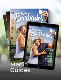 Media Guides