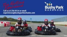 Go Karting At Bushy Park, Barbados